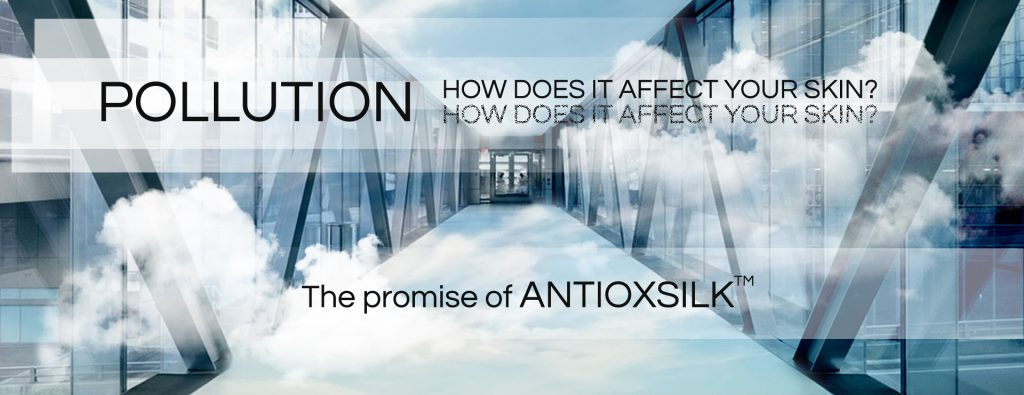 How pollution affects your skin?